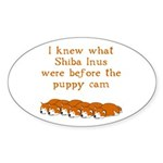 Shiba Puppy Cam Oval Sticker (50 pk)