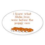 Shiba Puppy Cam Oval Sticker