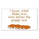 Shiba Puppy Cam Rectangle Sticker