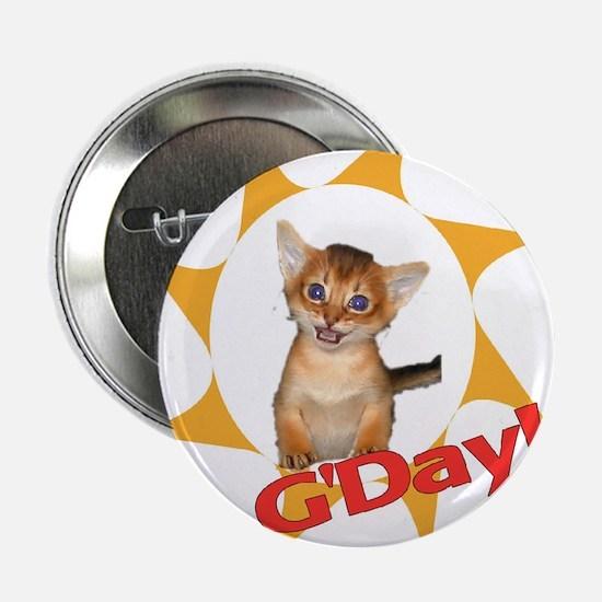 G'day Aby kitten