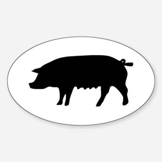 pig fluke Oval Decal