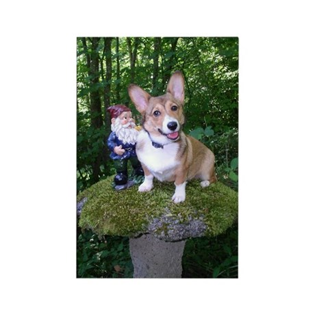 The Enchanted Corgi Rectangle Magnet (100 pack)