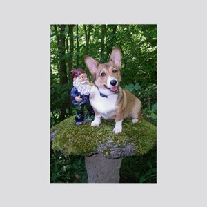 The Enchanted Corgi Rectangle Magnet