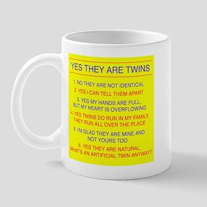 Twins Questions Fraternal Mug