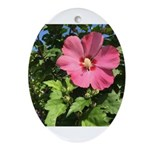 Pink Hibiscus Tropical Flower Oval Ornament