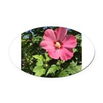 Pink Hibiscus Tropical Flower Oval Car Magnet