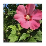 Pink Hibiscus Tropical Flower Tile Coaster