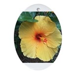 Yellow Hibiscus Tropical Flower Oval Ornament