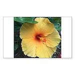 Yellow Hibiscus Tropical Flower Sticker