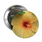 Yellow Hibiscus Tropical Flower 2.25