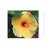 Yellow Hibiscus Tropical Flower Postcards (Package