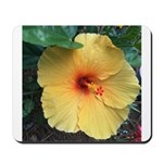 Yellow Hibiscus Tropical Flower Mousepad