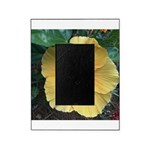 Yellow Hibiscus Tropical Flower Picture Frame