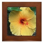 Yellow Hibiscus Tropical Flower Framed Tile