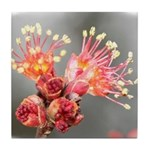 Maple Blossom Tile Coaster