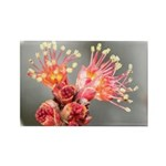 Maple Blossom Rectangle Magnet
