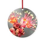 Maple Blossom Ornament (Round)