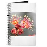 Maple Blossom Journal