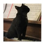 Piano Kitty Tile Coaster