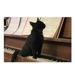 Piano Kitty Postcards (Package of 8)