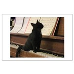 Piano Kitty Posters