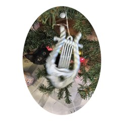 Christmas Tree Kitten Oval Ornament