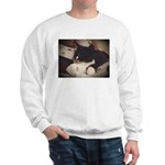 Tuxedo Cat (Sympathy) Sweatshirt