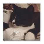 Tuxedo Cat (Sympathy) Tile Coaster