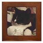 Tuxedo Cat (Sympathy) Framed Tile