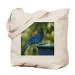 Jay & Jenny Tote Bag