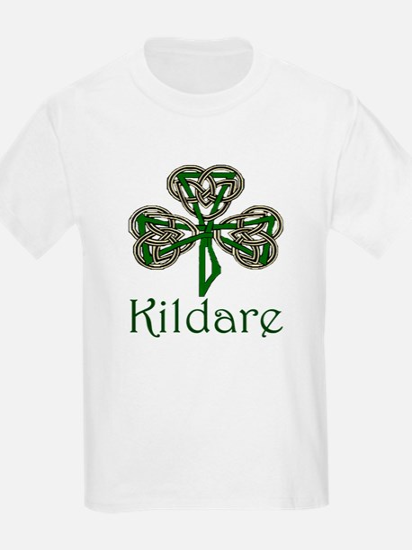 Kildare Shamrock T-Shirt