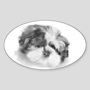 Shih Tzu puppy Oval Sticker
