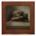 Cat Lounge Framed Tile
