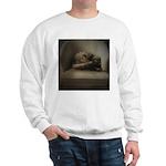 Cat Lounge Sweatshirt
