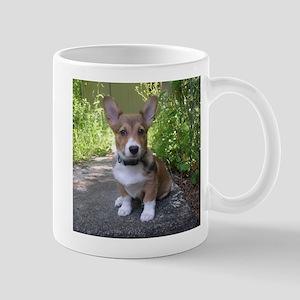 Pose! Mug