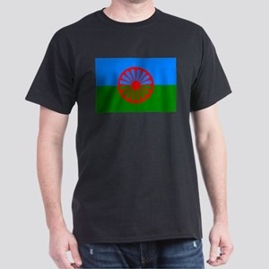 Romani Flag (Gypsies Flag) Dark T-Shirt