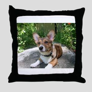Summer Corgi Throw Pillow