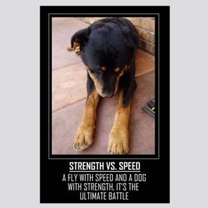 Strength vs. Speed Large Poster