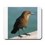 Brown Bird Mousepad
