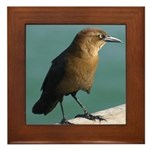 Brown Bird Framed Tile