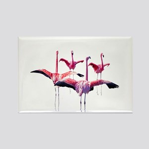 Flamingos on Rectangle Magnet