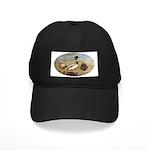 Mallard Ducks Black Cap