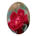 Red Rose Oval Ornament