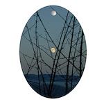 Burnaby Moon Oval Ornament