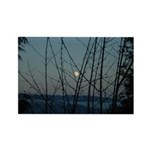 Burnaby Moon Magnets
