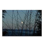 Burnaby Moon Postcards (Package of 8)
