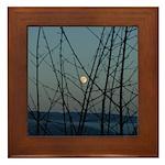 Burnaby Moon Framed Tile