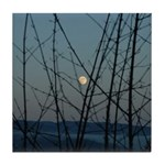 Burnaby Moon Tile Coaster