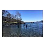 Barnet Marine Park Postcards (Package of 8)