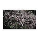 Magnolia Tree Decal Wall Sticker